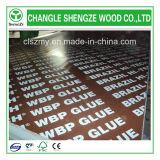 베스트셀러 WBP Glue 18mm Black Film Faced Plywood