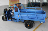 Triciclo elétrico do veículo com rodas da carga e do passageiro três (YK-ET-003)