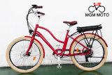 고아한 뚱뚱한 타이어 도시 전기 자전거