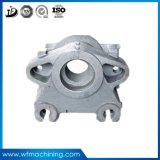 Il pezzo fuso dell'alluminio dell'OEM/acciaio inossidabile/ferro per di alluminio la pressofusione