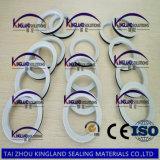 (KLG479) PTFE reforçados envolvem a gaxeta