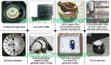 petit générateur d'essence de maison de la puissance 500W (EM950)