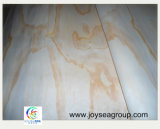 madera contrachapada radiante de la chapa del pino de los pies 1220*2440mm/4*8 para la puerta o la base
