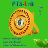 ULのセリウムとの屋外の働きのための耐圧防爆ライト5年の保証60W LEDの