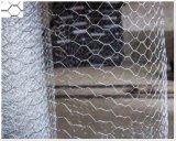 鶏の網のウサギの網の六角形の網