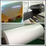 PVC Sheet Manufacturer di Black e di bianco Color Rigid Opaque