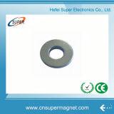 (12-4*5mm) Magneet van de Ring van het Neodymium/Magneet NdFeB