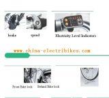 2014 درّاجة نموذجيّة سريعة كهربائيّة ([سن-004])