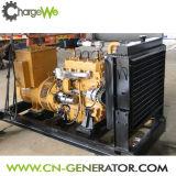 генератор газа трехфазного старта выхода 50Hz/60Hz легкого малый