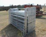 comitato d'acciaio del bestiame galvanizzato 5FT*12FT/comitato del cavallo