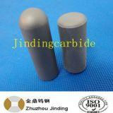 Hpgrのための摩耗の部品の使用として粉砕ローラーの炭化物Pin