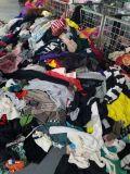 무료 샘플 기점 모직 스웨터는 판매를 위한 마이아미 입는 작풍을 도매한다