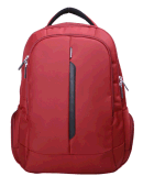 Neues Style Backpack für Laptop School Travel Hiking Use (SB2124)