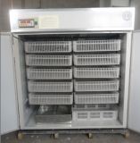 Incubateur automatique d'oeuf 5000 de caille d'oeufs de caille de couvabilité élevée