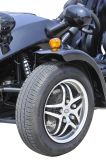 빨간 Chain Drive Tricycle Motorcycle ATV (KD 250MD2)