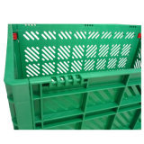 Forti gabbie di plastica pieghevoli