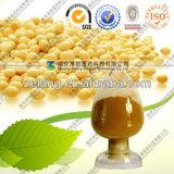 純粋な高品質の大豆のエキス40%の大豆のイソフラボン