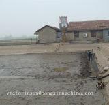 防水の池はさみ金を耕作しているエビ