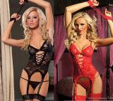 De in het groot Sexy Sexy Lingerie van het Ondergoed van de Dames van het Kant Transparante
