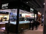 STATION THERMALE extérieure hydraulique de luxe de syndicat de prix ferme de bain de modèle de mode avec le système de balboa (M-3373)