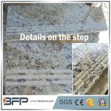 Scale di pietra naturali gialle Polished/Step&Riser di Grantie per il pavimento interno/di sopra