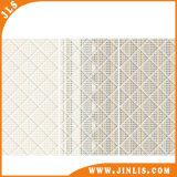 Mattonelle di ceramica della parete del salone Polished lucido del materiale da costruzione 300X600mm