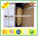 230g Coated Paper Card Board