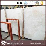スペインのサイの白かBiancoのサイの大理石の平板