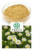 Flavone naturale & puro 10% dell'estratto del crisantemo