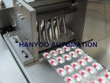 Automatische 00 Kapsel-Blasen-Blasen-Flachverpackungsmaschine