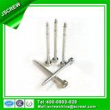 Kundenspezifische hergestellte Edelstahl-Schraube für elektrischen Ventilator