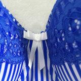 Новый ослеплять Arrvial Striped синь с нижним бельем шнурка