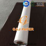 grosse Größe 610mm*45W, die lichtdurchlässiges Papier mit hölzernem Kern verfolgt
