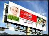 Maximales 5m Width PVC Flex Banner (500dx500d 9X9)