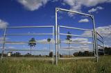 Les appareils de manutention de bétail, rampe de charge, pèsent la caisse, les panneaux et le livre de grilles