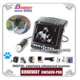 De digitale pols-Hoogste Veterinaire Scanner van de Ultrasone klank met Sonde (bw560v-PRO)