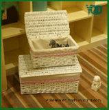 다기능 Storage Wicker Basket, Decoration.를 위한 Good