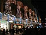 De Decoratie van het Huis van de LEIDENE Lichten van Kerstmis