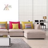 Il sofà del tessuto del salone ha impostato con l'ammortizzatore variopinto (9099C)
