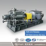 Gasolina del proceso químico y bomba de petróleo de alta presión de gas