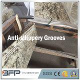 De mooie SneeuwTrap/de Ladder/de Trap van het Graniet van de Vos voor Binnenlandse Vloer