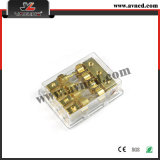 Factory High Performance Auto Accessories Fuse Holder (FH-013)