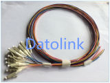 12 Pigtails milímetro Om4 900um LC/PC 2m LSZH