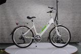 250W verstecktes Straßen-elektrisches Fahrrad der Batterie-36V für Dame