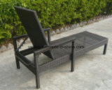 Прочный водоустойчивый напольный салон фаэтона салона Sun мебели сада с регулирует назад &Armrest (YTF242)