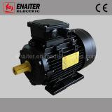 IE1 motor elétrico