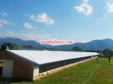 Chambre de poulet de structure métallique avec le prix bas et qualité de constructeur