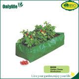 Onlylife umweltfreundlicher PET Gewebe-Garten-Pflanzer für Erdbeere