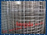 China Factory Galvanized/PVC Coated Welded Wire Mesh (Fabrik 20years u. ISO9001 Approved)
