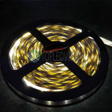 Striscia flessibile di alta qualità 60LEDs/M SMD3528 LED con IEC/En62471